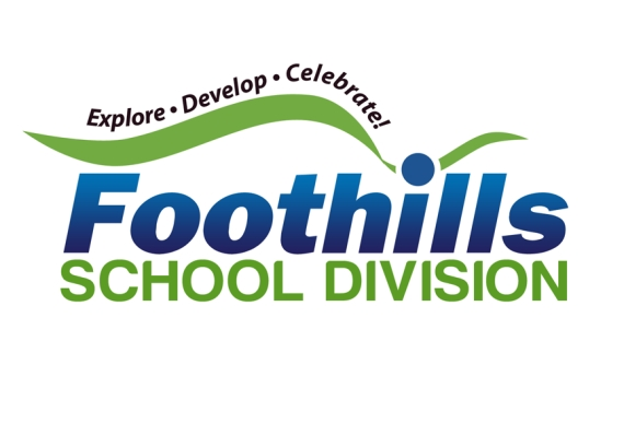 FSD new logo
